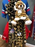 Conroe Tigers